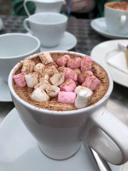 Der beste Kakao der Welt