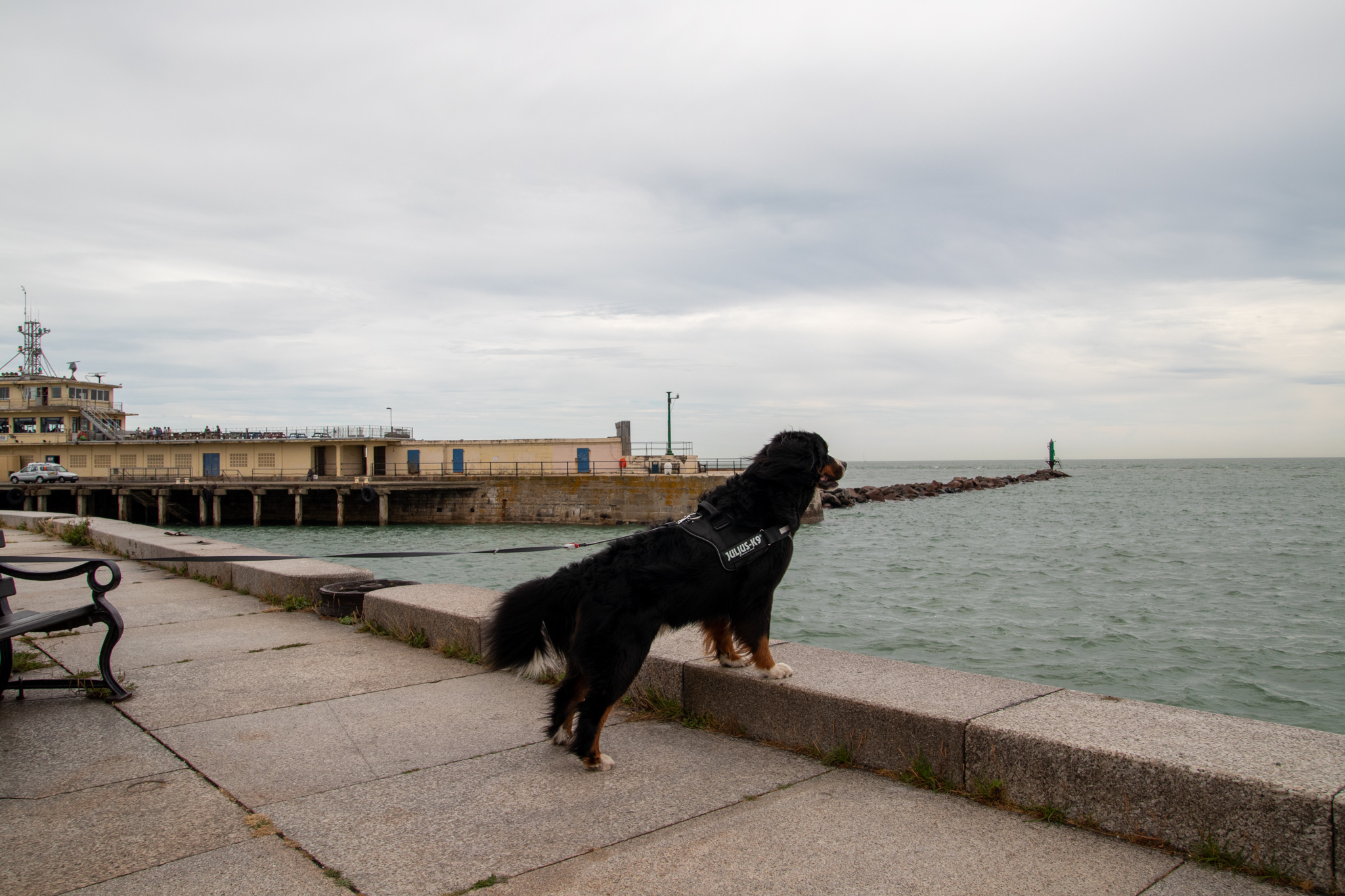 Sams Blick auf die See